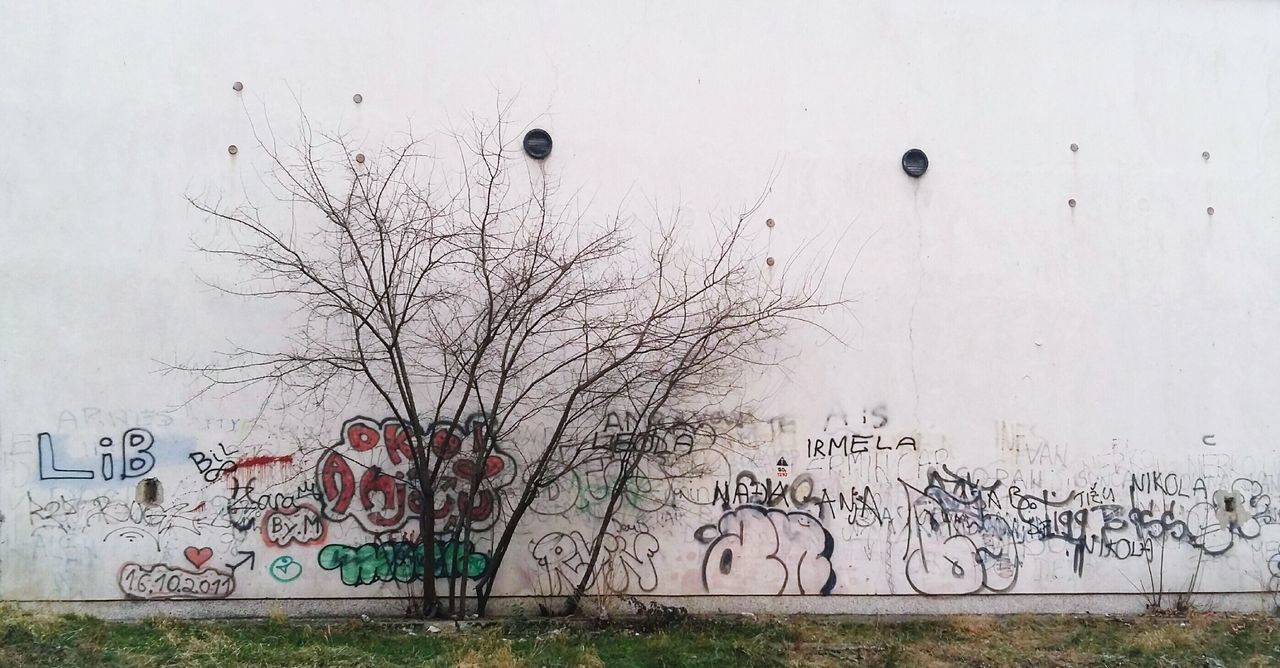 No People Outdoors Bare Tree Nature Day Graffiti Wall Wall Art Winter Big Wall Old Building  Empty Emptiness Bare