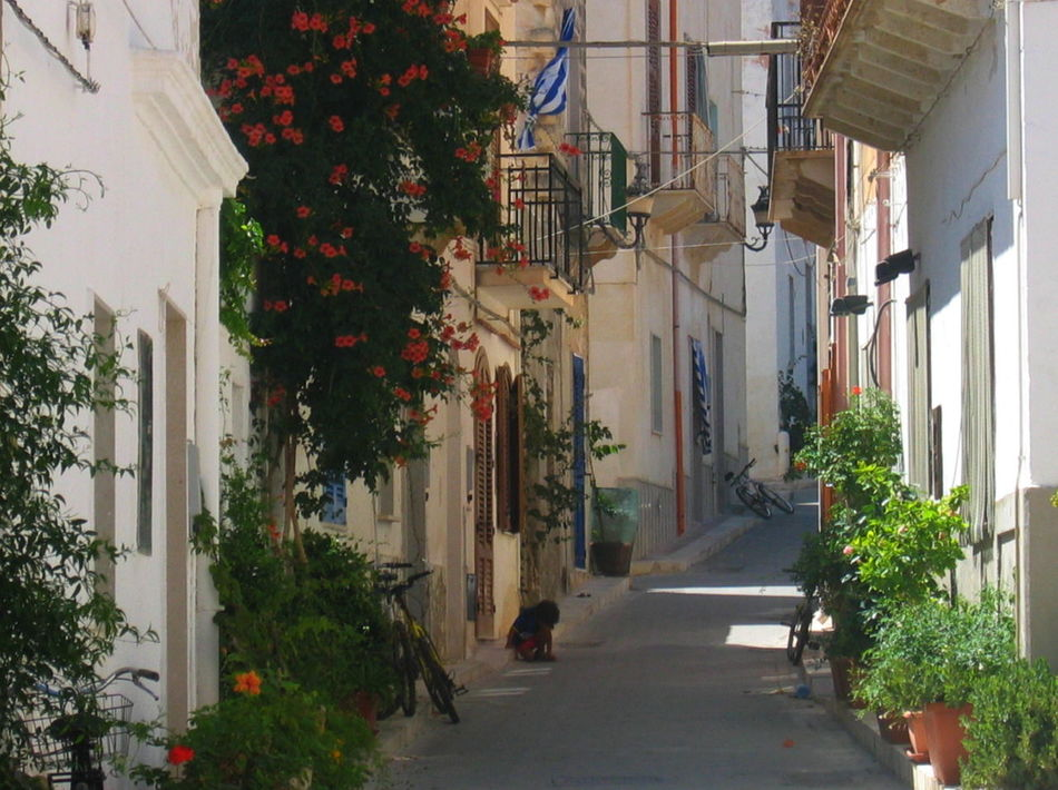 Balconies Bycicle Child Egadi Flowers Marettimo Island Sicily, Italy Street Sunlight And Shadow