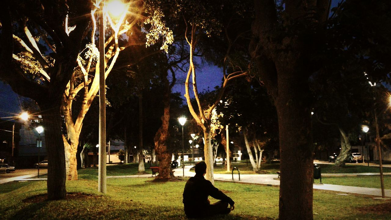 Paolo Mendiola Night Park - Man Made Space Men City Nature Tree Illuminated Street Light Bestfriend❤