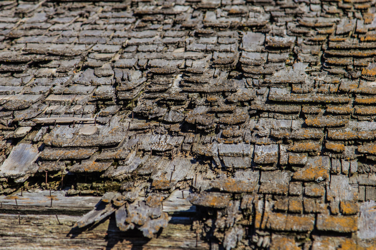 Rotting wooden shingles. Canon60d Canonphotography House Nail Old Roof Rotten Rotting Shingles Wood Wooden