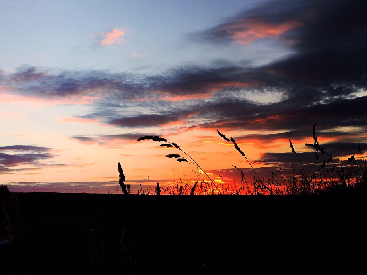 The birth of fire Orange Color Sunset Sky Silhouette Nature Scenics Beauty In Nature Tranquil Scene Outdoors Landscape No People Rural Scene Sunlight Golden Hour Nature_collection Best EyeEm Shot
