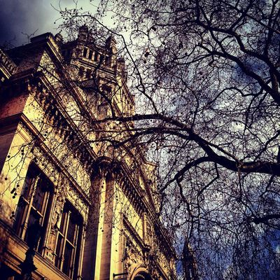 Architecture Bare Tree Building Building Exterior Built Structure City Day Dramatic Sky Growth Harrow London Low Angle View Nature No People Outdoors Sky Tree