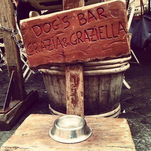 Una birra media... Grazia &Graziella