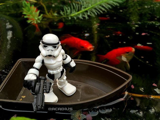 """I'm gonna need a bigger boat."" Star Wars Stormtrooper Geek Toy Geek Toys Toy Art"