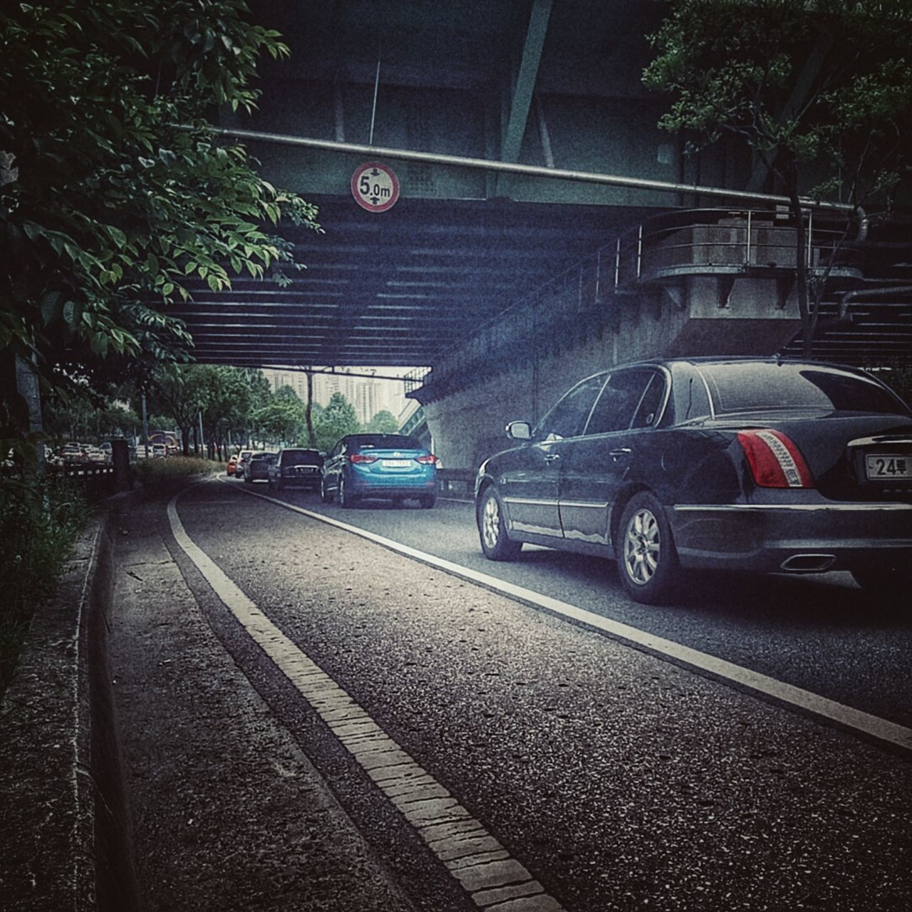 transportation, car, mode of transport, no people, land vehicle, day, stationary, tree, built structure, architecture, outdoors
