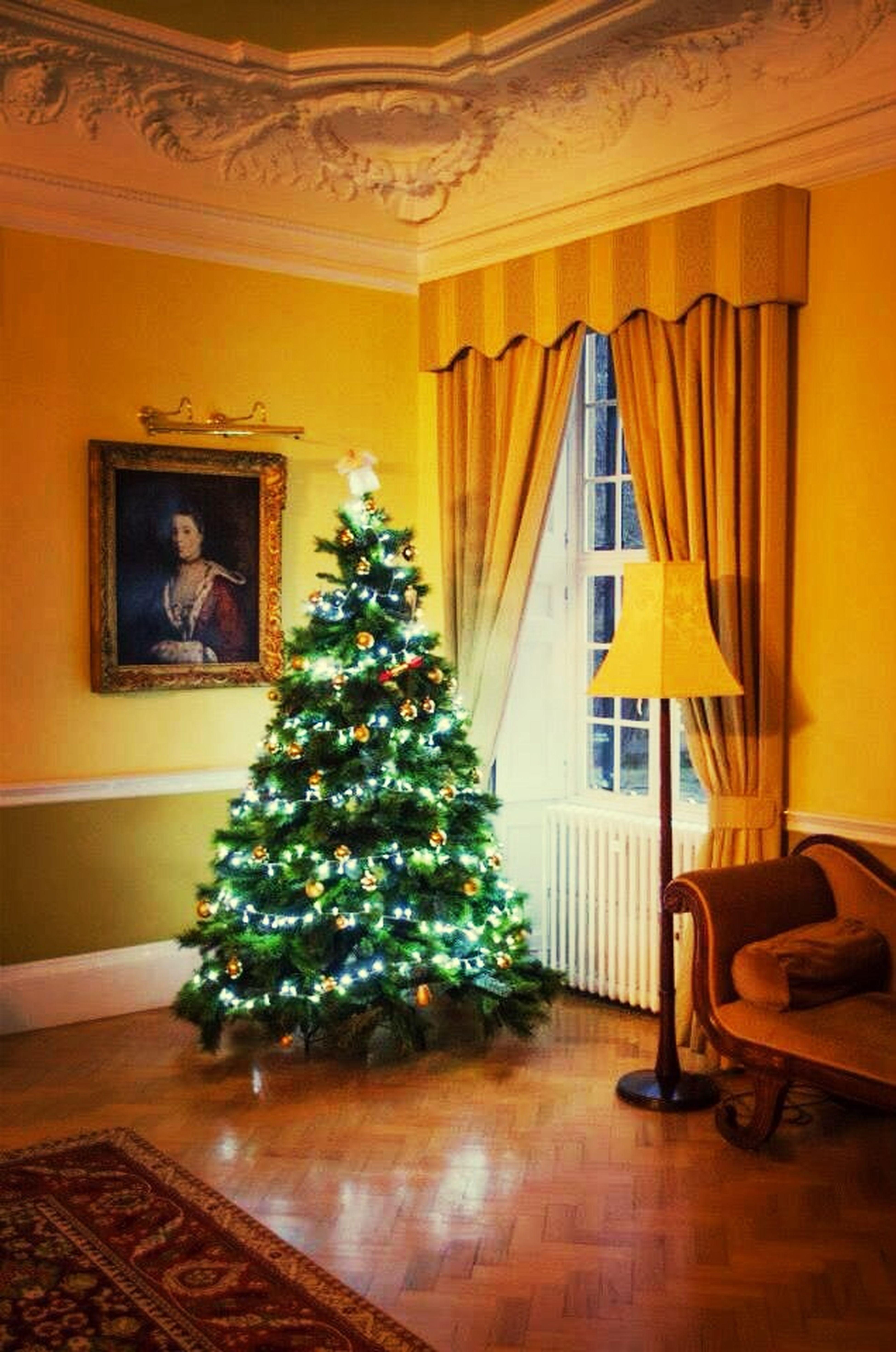 Christmas Christmas Tree Christmas Lights