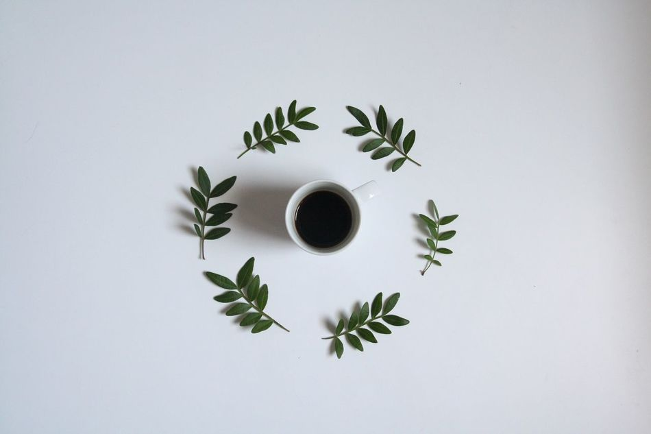 Beautiful stock photos of coffee, studio shot, white background, leaf, directly above