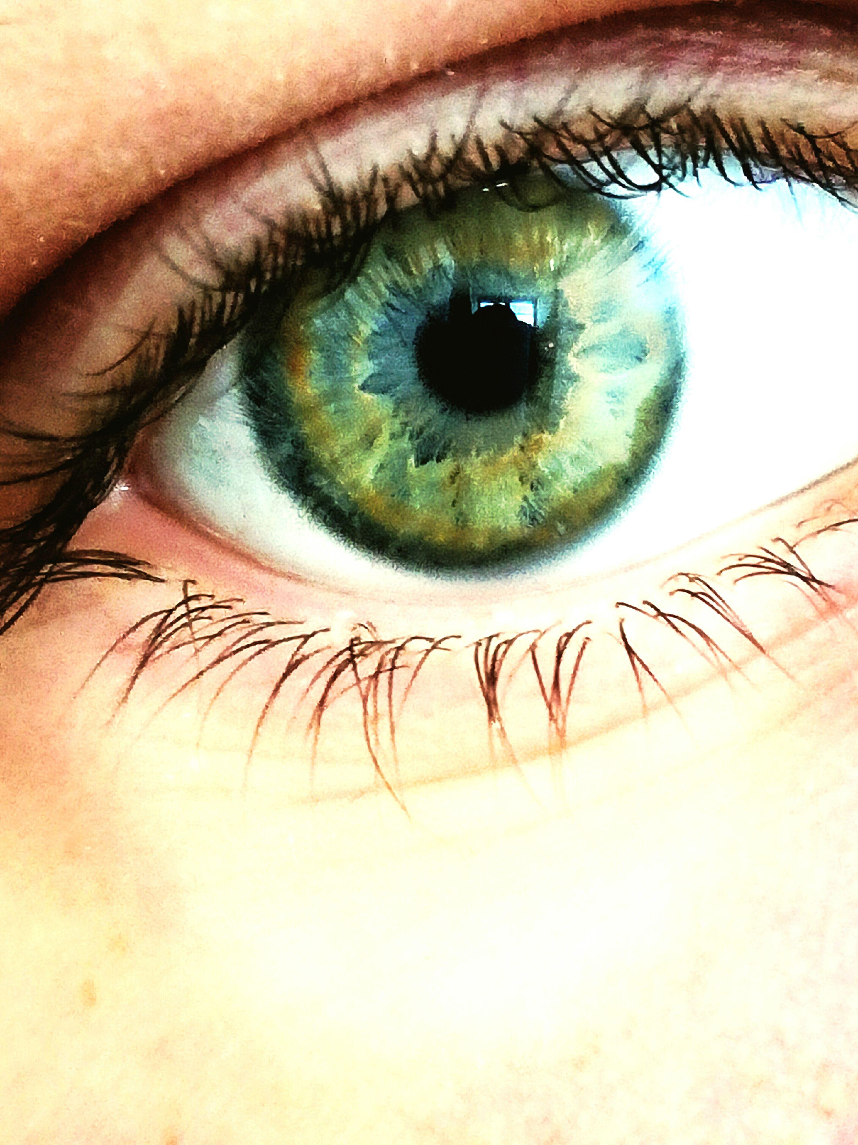 close-up, human eye, macro, human body part, looking at camera, eyelash, one person, real people, eyesight, sensory perception, eyeball, nature, people, outdoors, young adult, day