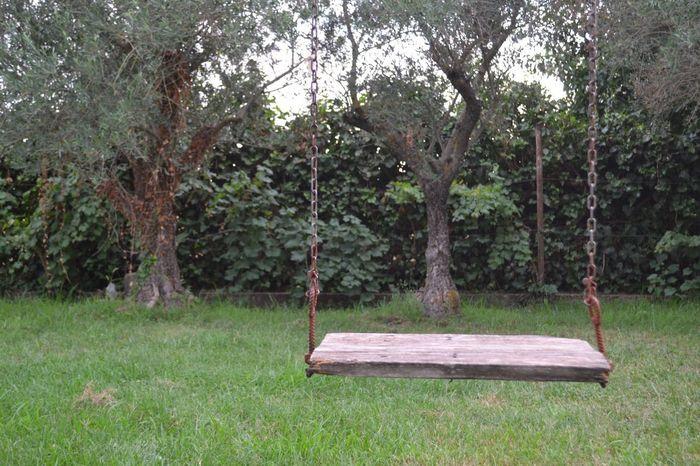 Attimi di vita.1 - Tornate bambini: giocate con il vostro Destino. Tree Green Color Nature Beauty In Nature Poesia Poetic Calabria (Italy) Nature Beauty In Nature Tranquility Malvito Altalena Destino Tornare Bambini Second Acts