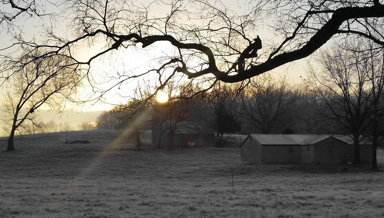 This tree limb appears somewhat like a hand, pinching the sun between its thumb and index finger on a frosty morning in the Ozarks. Catch The Sun Frosty Morning Ozarks Nixa Mo Morning Sun Rise Winter Countryside Rural America Nature Trees Lucky Shot Touch The Sun Nature On Your Doorstep The Great Outdoors - 2016 EyeEm Awards