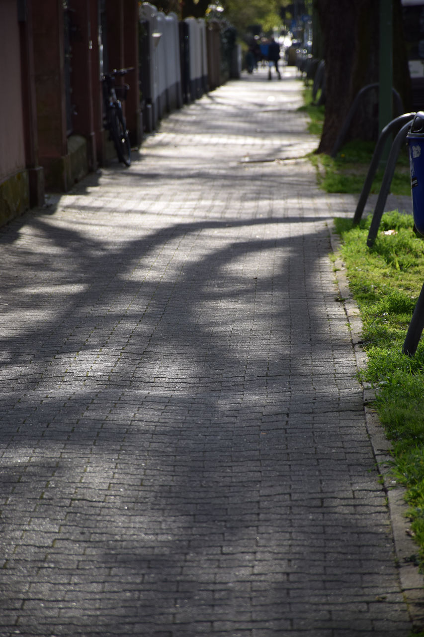sunlight, the way forward, shadow, no people, day, outdoors, nature