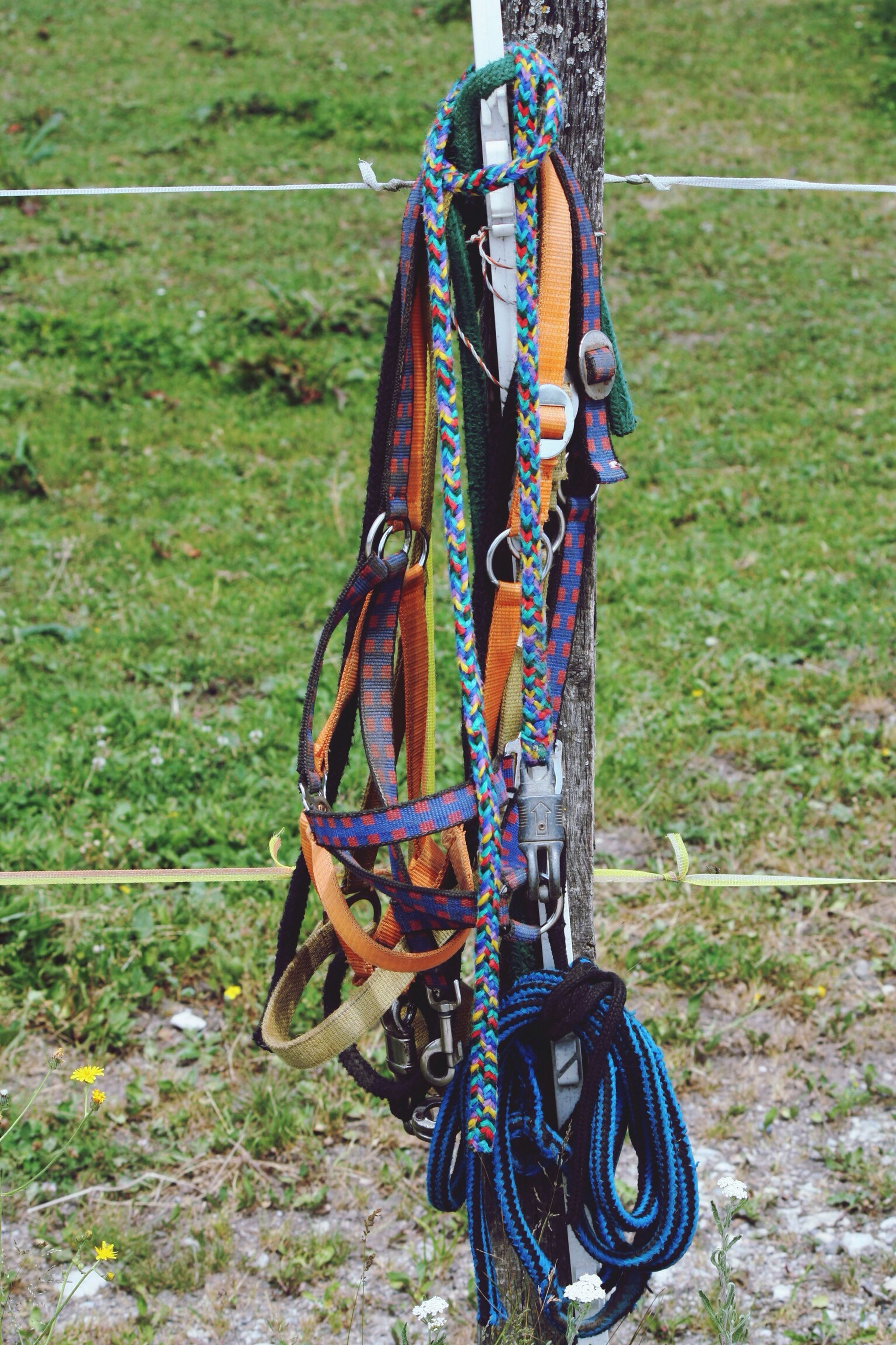 hanging, field, grass, day, sport, outdoors, no people, multi colored, nature, close-up