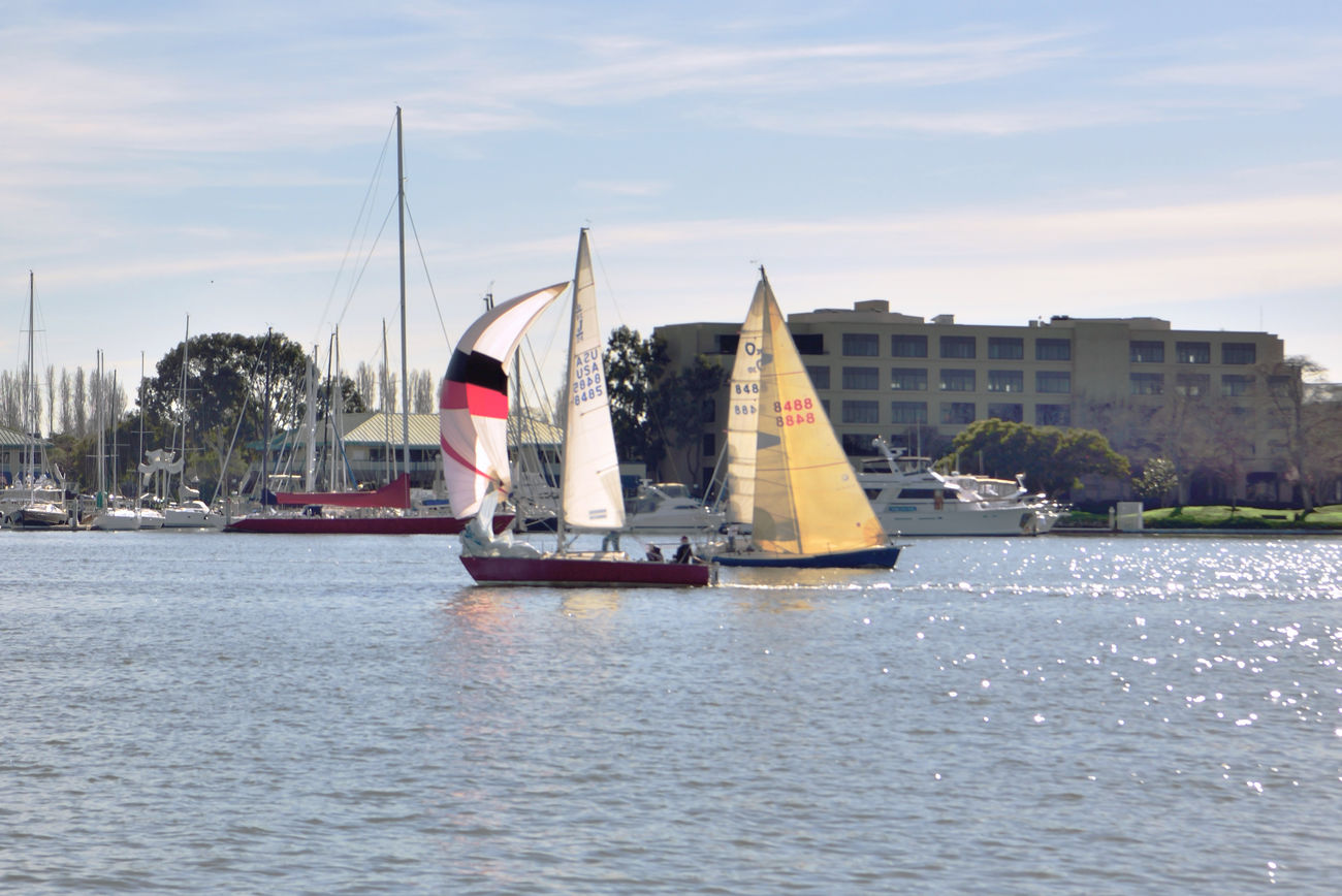 Sailing Embarcadero Cove 20 Oakland Estuary Jack London Square The Color Of Sport Sports Sailboats Sailing Sailboats Tacking Aquactic Watersports Alameda Marina On Opposite Shore Waterfront Wet Berths Moored Boats Masts Nautical Vessels Sailboats Racing Colorful Sails Embarcadero Cove Marina Buildings Teamwork Enjoying Life Calm Waters Wind Power