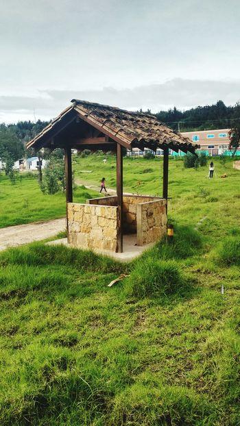 Kiosco  Arboles , Naturaleza