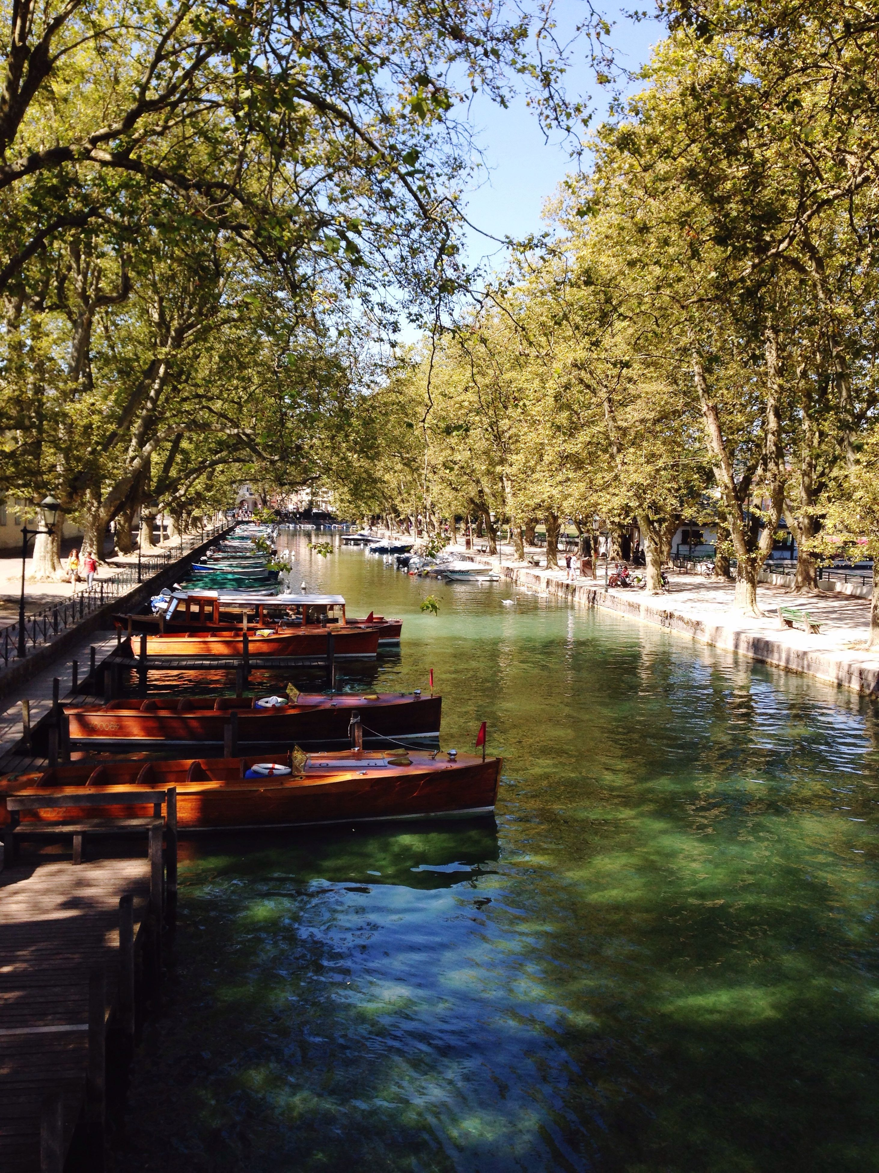 tree, water, boat, tranquil scene, growth, tranquility, nature, travel destinations, canal, scenics, in a row, branch, green color, day, non-urban scene, outdoors, waterfront, sky, tourism, beauty in nature