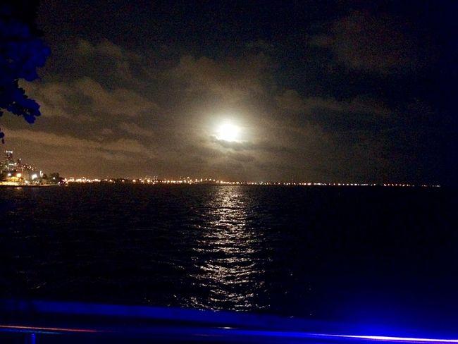 Christmas full moon over the Bay in Miami CoconutGrove Full Moon Skyline Florida