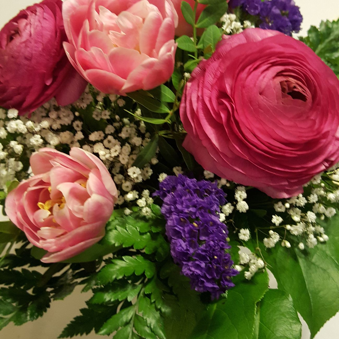 Flowers for my birthday... Flowers To The World