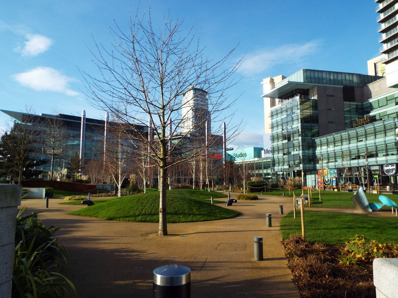 Media City Salford Salford Quays Salford United Kingdom Blue Sky Trees The City Light