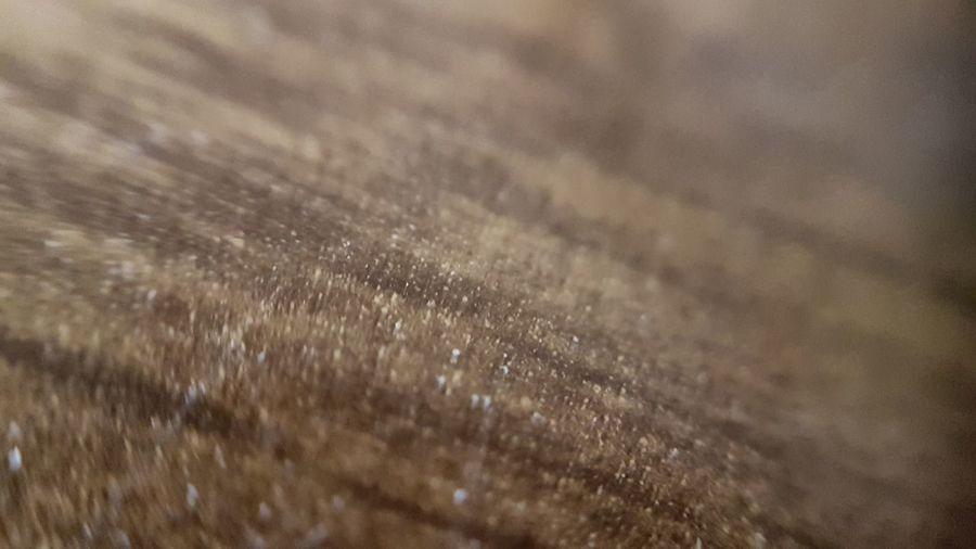 macro Macrophotography Macro_perfection Macro_collection Macro Macro Photography Macro_captures Texture Textured  Texture_collection Texture Photo Close-up