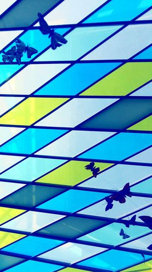 Abstract Full Frame Backgrounds Blue Multi Colored Day No People Close-up Chart Outdoors Graph The Photojournalist - 2017 EyeEm Awards The Portraitist - 2017 EyeEm Awards The Great Outdoors - 2017 EyeEm Awards EyeEmNewHere Break The Mold The Street Photographer - 2017 EyeEm Awards The Architect - 2017 EyeEm Awards City Reflection Indoors  Spirituality Scenics Window In A Row Visual Feast