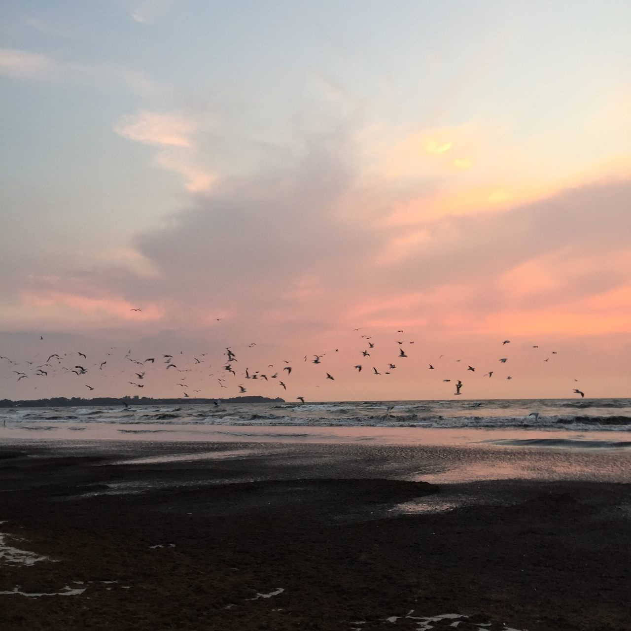 Birds Flying Over Sea Against Cloudy Sky During Sunset
