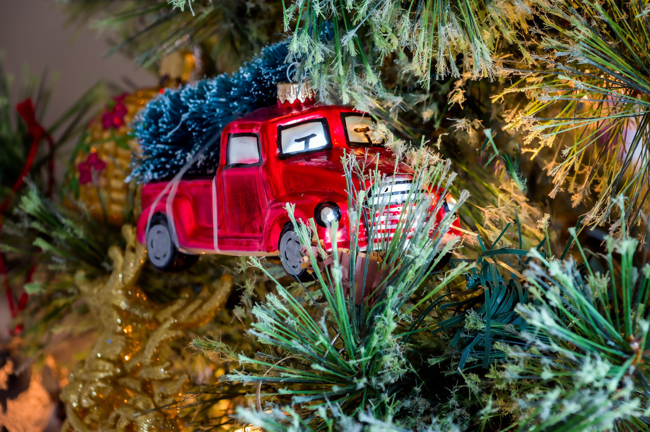 Little Red Truck Beauty In Nature Christmas Christmas Decoration Christmas Tree Close-up Day Growth Land Vehicle Mode Of Transport Nature No People Outdoors Plant Red Red Truck Tree
