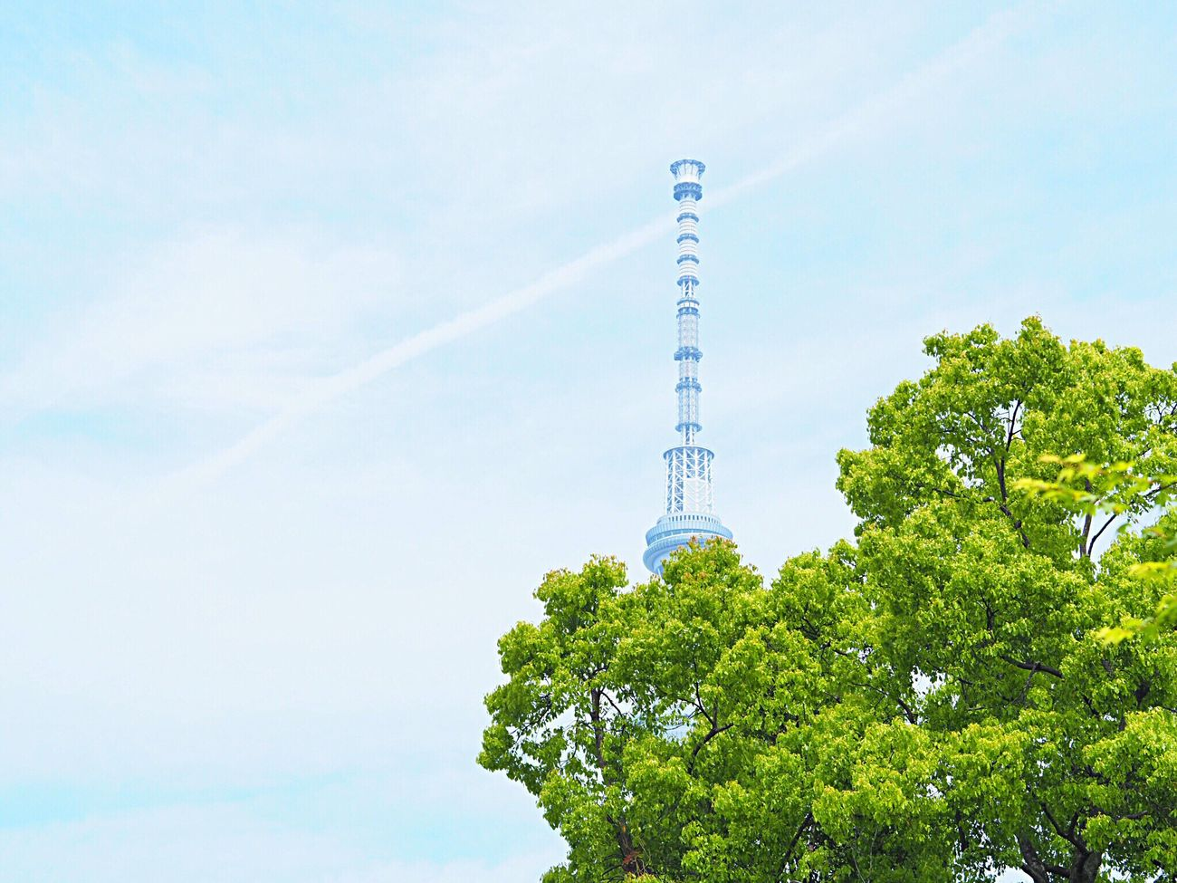 Skytree Scenics Sky Architecture Built Structure Green Color Growth Building Exterior Nature Beauty In Nature Tokyoskytree 東京スカイツリー Landscape Japanese Landscape Tokyo Tokyo,Japan Olympus Om-d E-m10