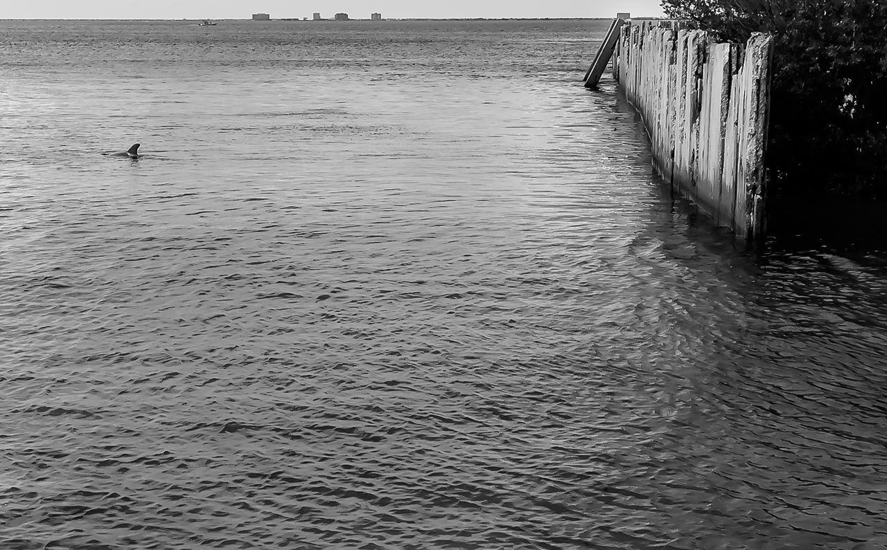 Black & White Black And White Blackandwhite Photography IPhone Photography IPhoneography Sea Sea And Sky Street Photography Streetphotography Sunset