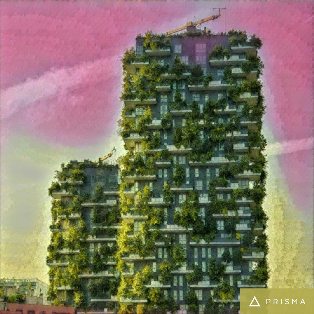 Prisma Architecture Vertical Garden Milano Italy Built Structure Multi Colored Outdoors No People Verticale  Bosco Verticale Porta Nuova Travel Summer Time  Evening Sun Summer Time  Balcony Garden