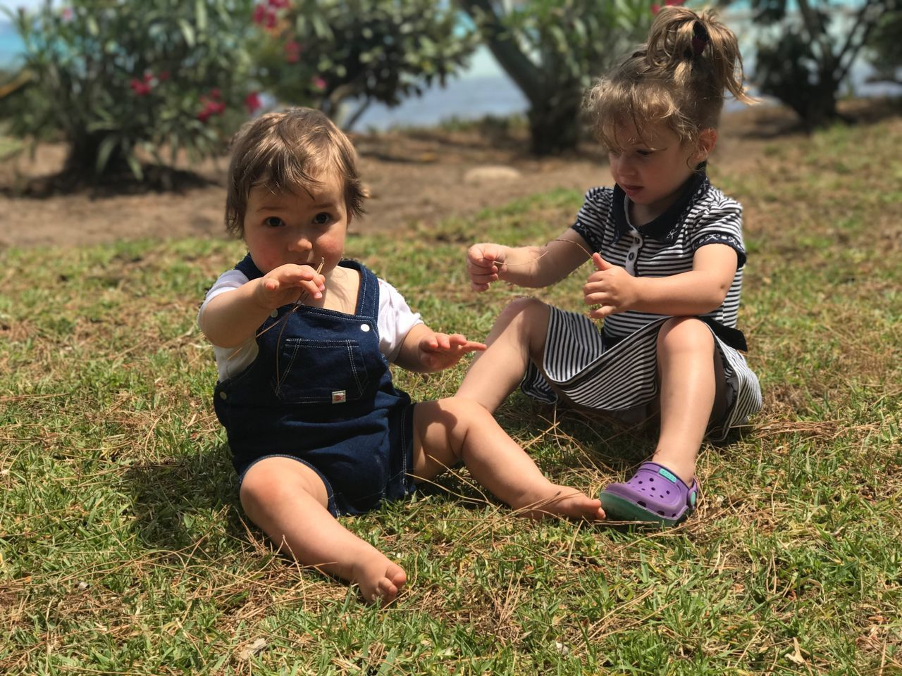 Siblings Childhood Two People Grass Sitting Casual Clothing Full Length Togetherness Child Girls Day Outdoors Real People Boys Bonding Playing Tree Blond Hair Nature Friendship People