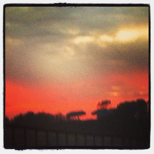 Red sky in rome! First Eyeem Photo