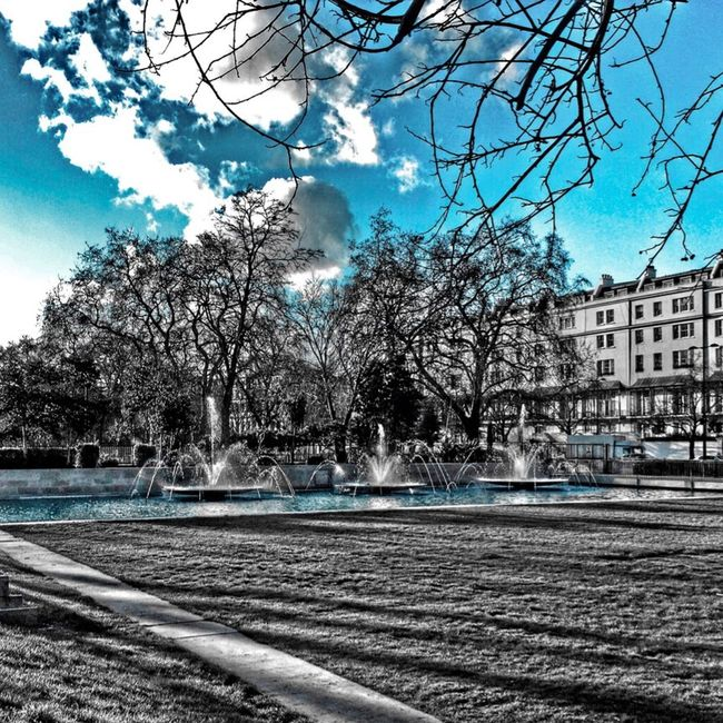 HDR Eye4photography  EyeEm Nature Lover Good Times Nature Streetphotography Colorsplash Swimming With The Fish Architecture Sunset