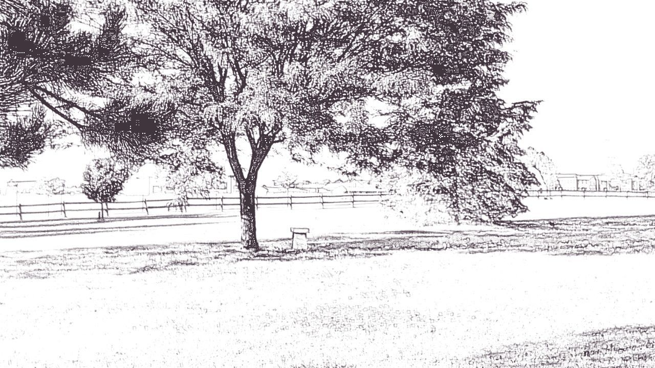 Cartoon Effect  Cartoon Photo Photo Sketch Landscapelovers Playing With Effects Showcase June EyeEm Gallery New On Eyeem Fresh On Eyeem  TRENDING  EyeEm Week Popular New On Market Eyeem Trending My Point Of View