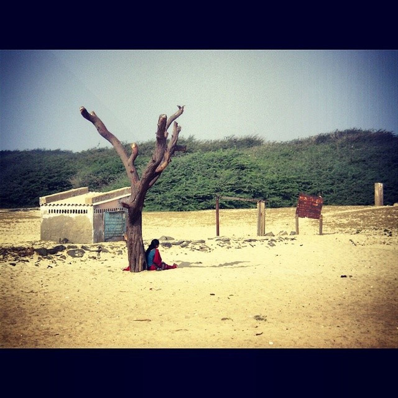 Someone is sitting in the shade today because someone planted a tree a long time ago. Lady SittinfAlone Waiting Deserr Blue Sky Beautiful Random Throwback KACHH Green Nature De3p LetsCaptureEveythingBeforeWorldEnds Justcantgetenough Instalikes Instagram HTC