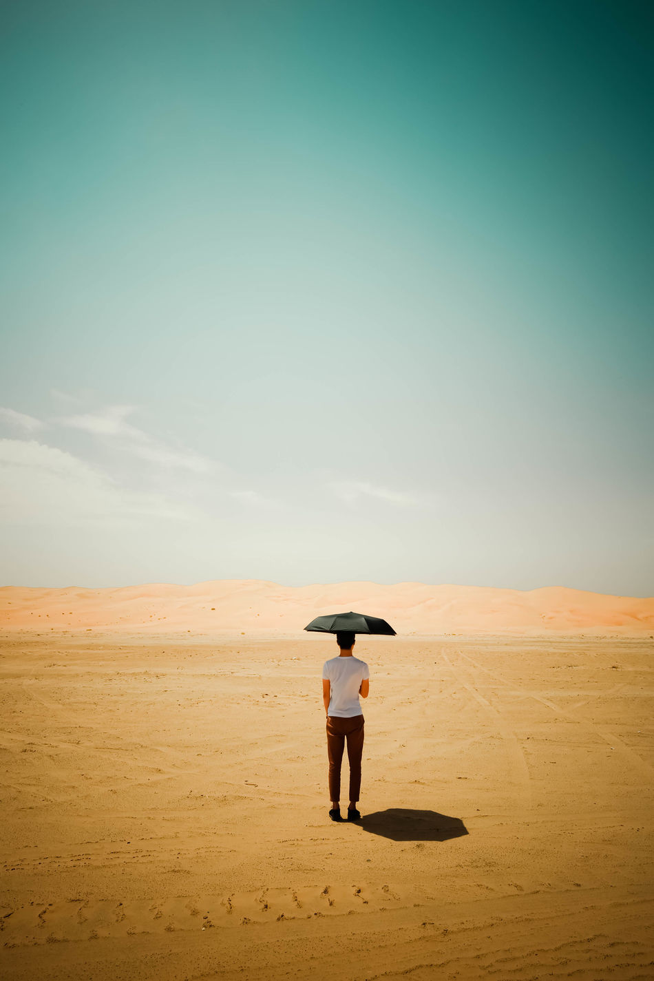 Beautiful stock photos of nature,  Arid Climate,  Barren,  Beach,  Beauty In Nature