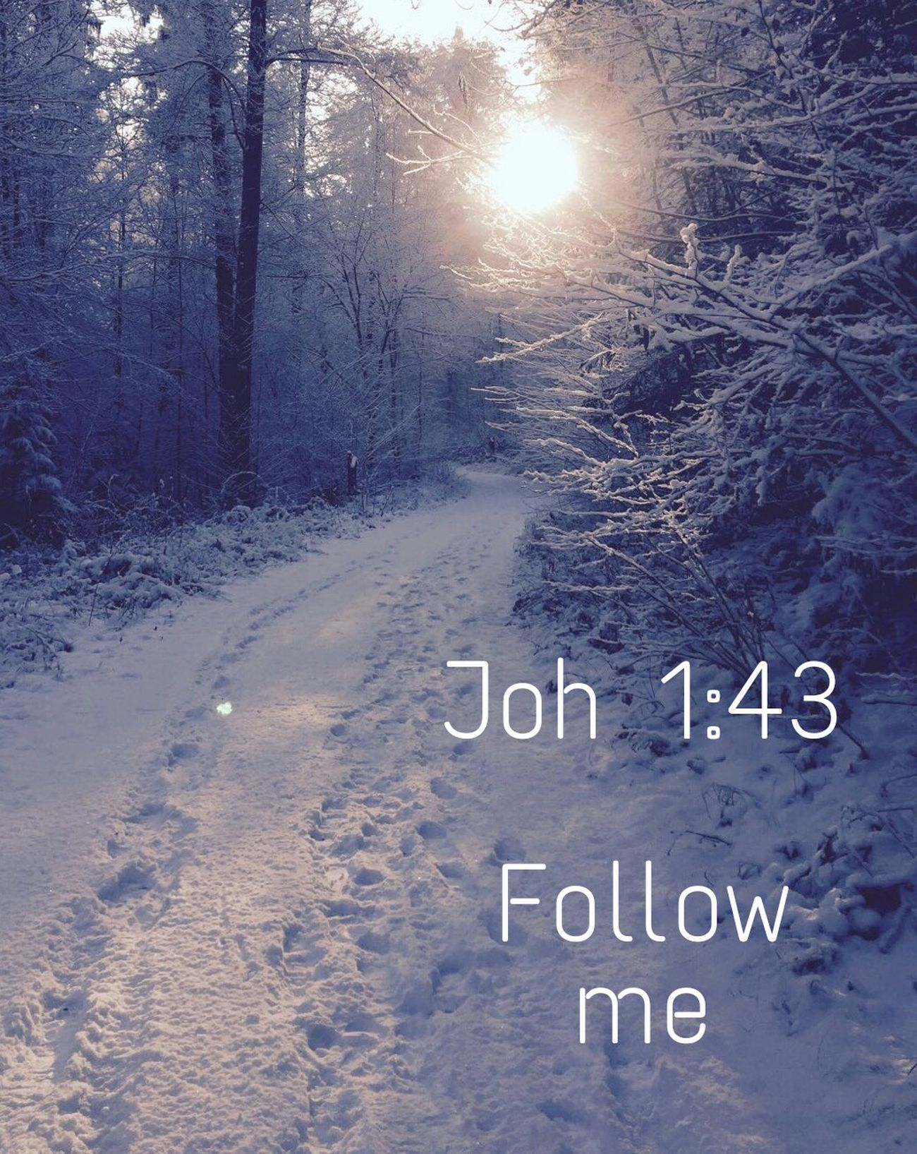 *[[Joh 1:43]] KJV* The day following Jesus would go forth into Galilee, and findeth Philip, and saith unto him, Follow me. Jesus Followme Follow Follow Jesus Winter Snow Nature Bible Verses