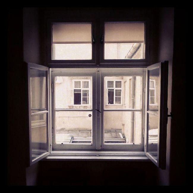 Old Windows Oldcityhall Grunge austria wienerneustadt