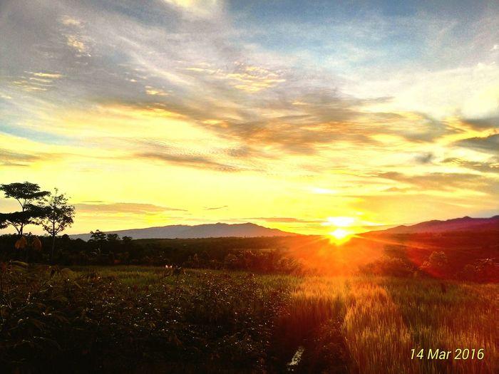 Sunrise First Eyeem Photo