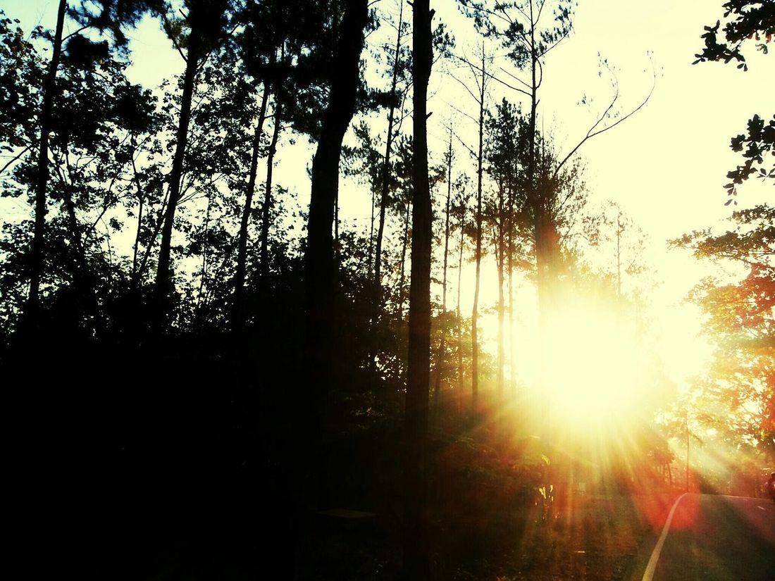 Just feel it.... Sunrise_Collection Sunrise Colors Sunrisephotography Beautiful Sunrise