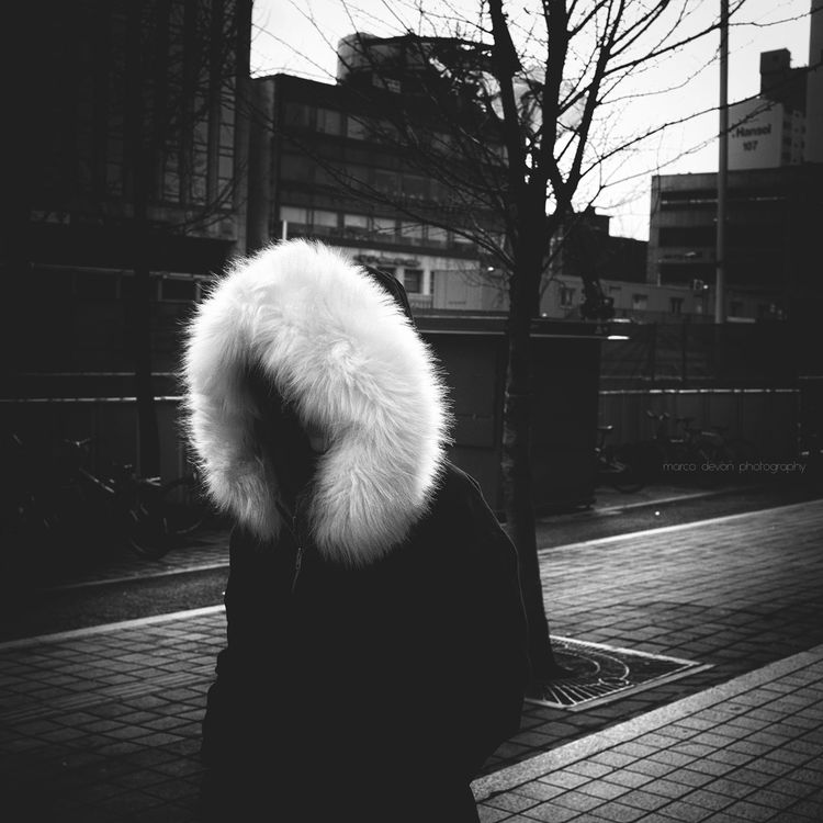 Too cold Cold Winter ❄⛄ Cold Day Fur Blackandwhite Black And White Monochrome Monoart Streetphotography South Korea