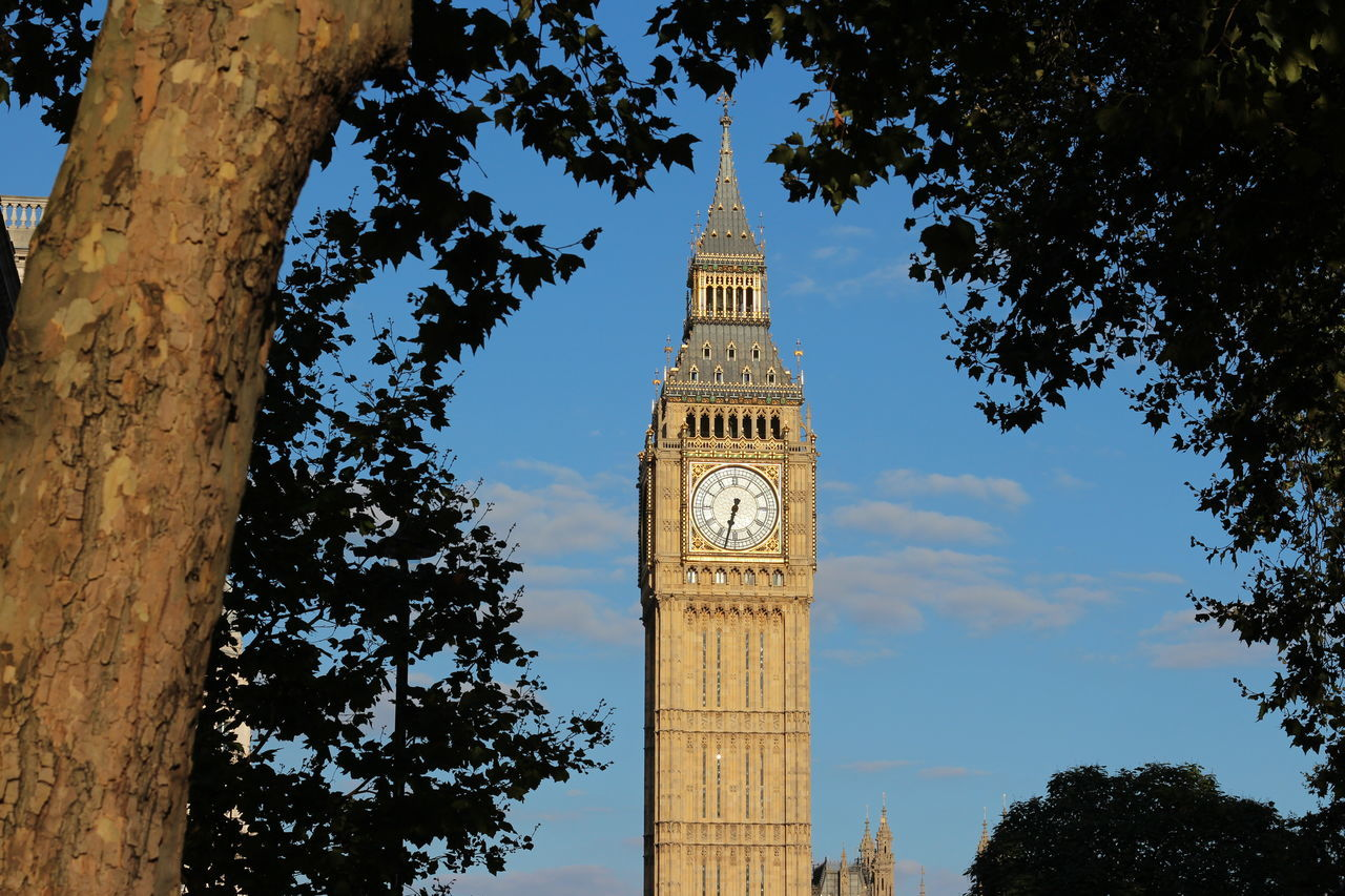 Big Ben in golden hour Architecture Big Ben Big Ben, London Building Exterior Built Structure City Cityscape Clear Sky Clock Clock Face Clock Tower Cultures Day Nature No People Outdoors Sky Time Tourism Tower Travel Travel Destinations Tree Urban Skyline