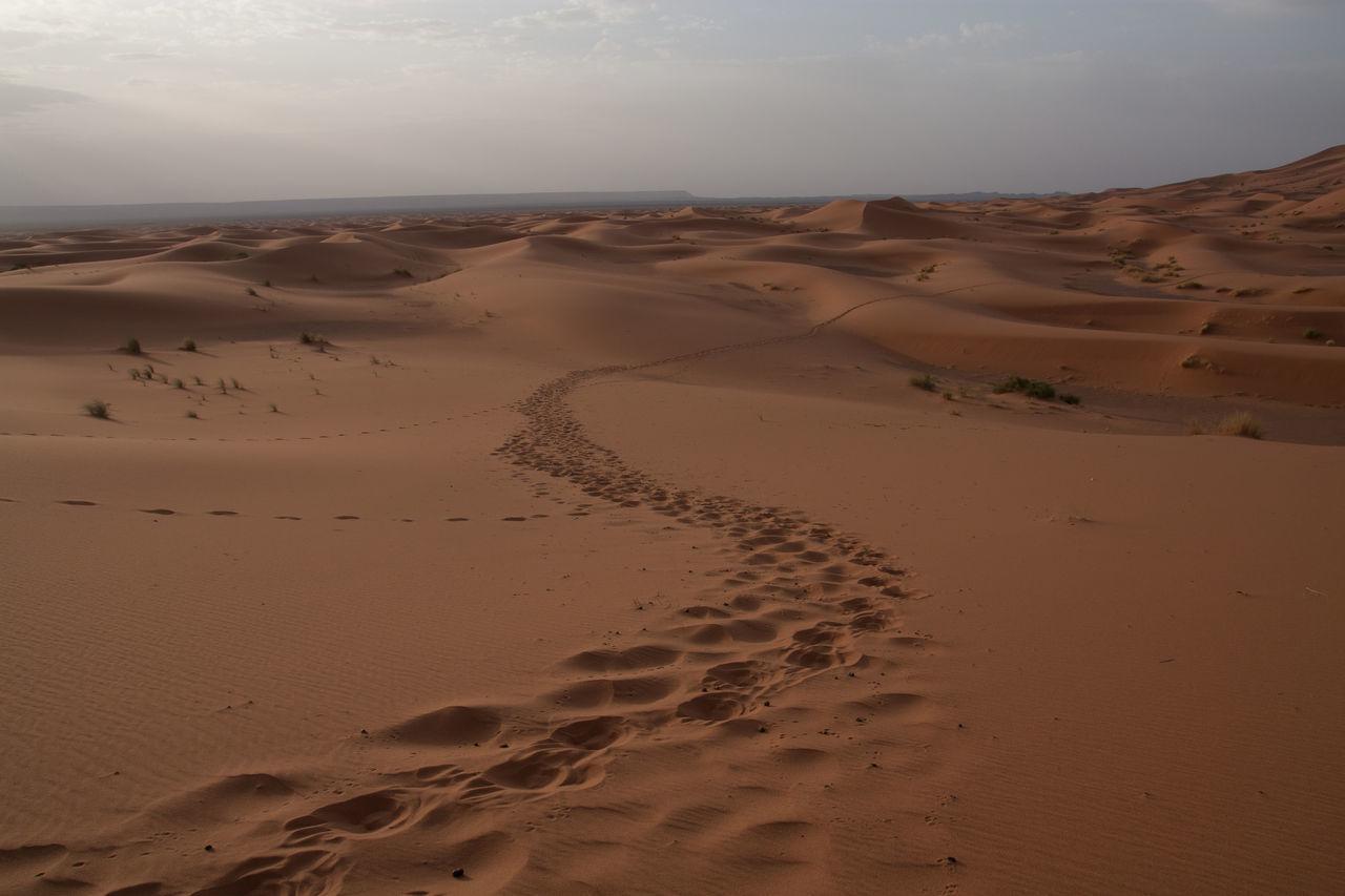 Beautiful stock photos of sand, Arid Climate, Arid Landscape, Cloud - Sky, Cloudy