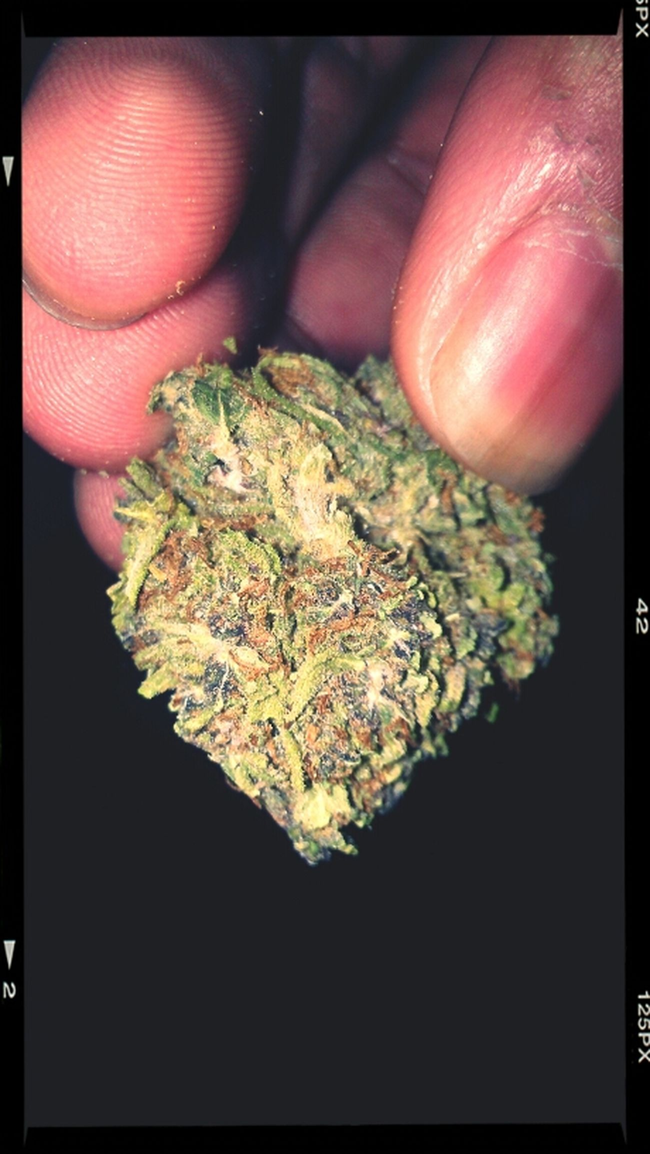 The Love for Weed .