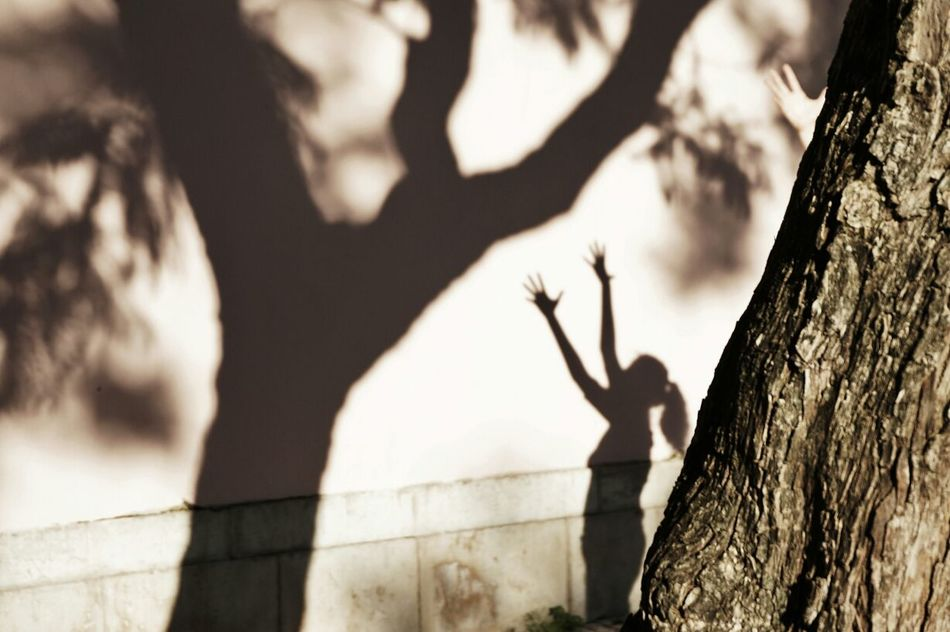 Beautiful stock photos of tree, Architecture, Arms Raised, Built Structure, Day