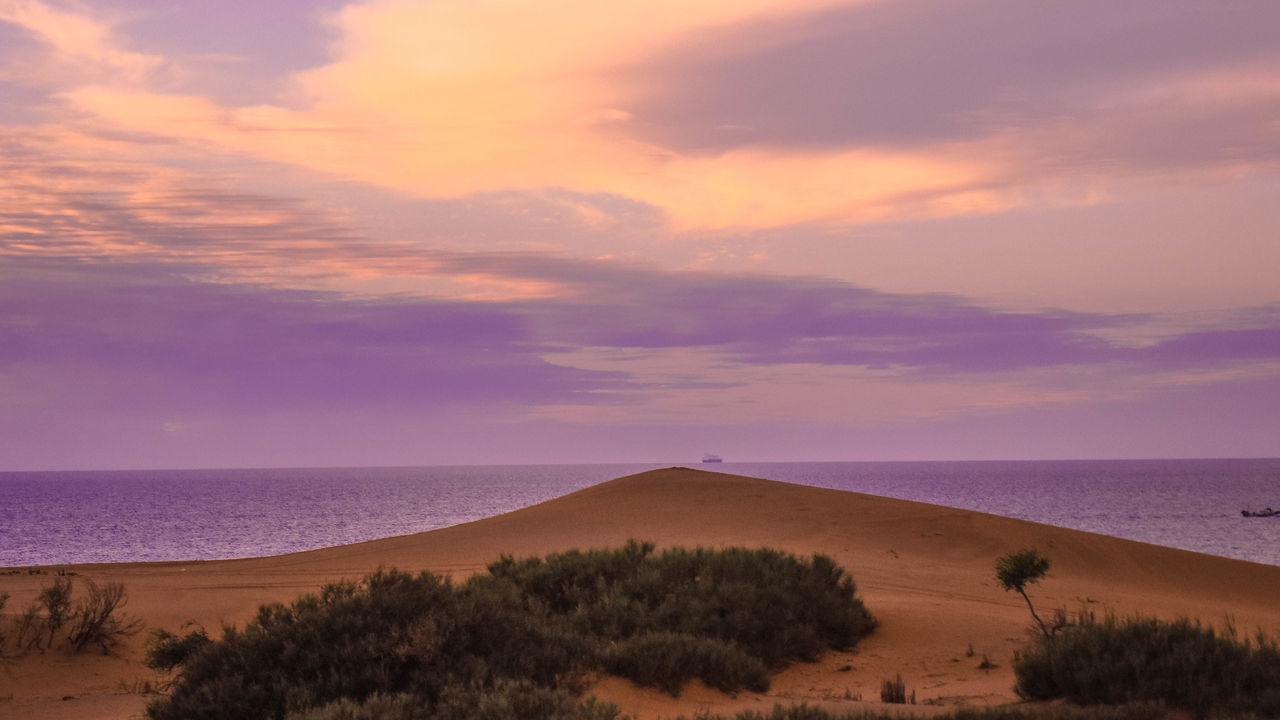 Deserts Around The World Desert Beauty Desert And Sea Sky_collection Sunset_collection Desert Landscape Sand Dunes Desert Plants