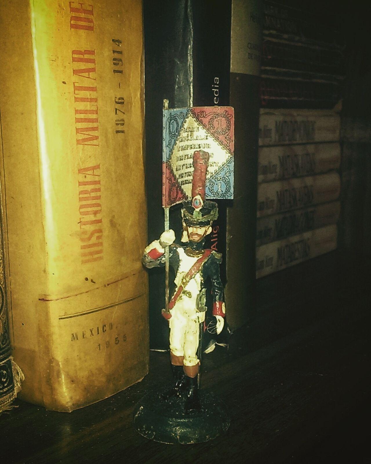 La Garde Impériale Bücherregal LIBRERO Bookcase Zinnsoldat Soldado De Plomo Tin Soldier
