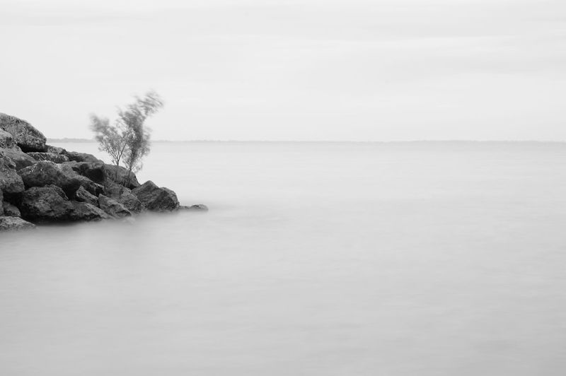 Nature Water Lake Beauty In Nature Tranquil Scene Tree Scenics Tranquility Sky No People Horizon Over Water Day Outdoors Black & White Long Exposure Beautiful Gorgeous Maumee Bay