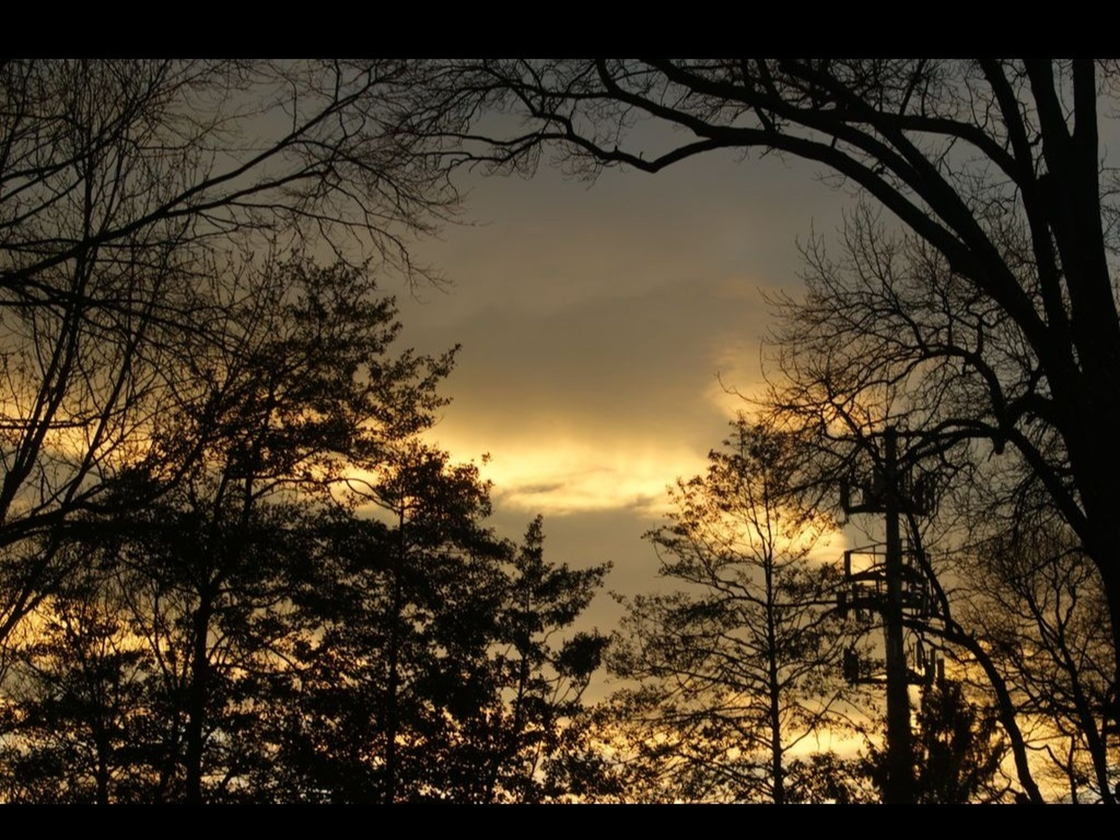 Last Rays Of Sunlight
