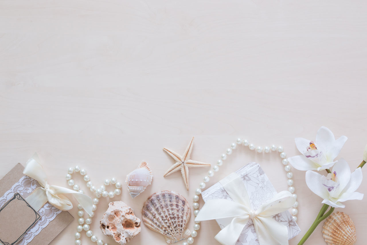 Beads Celebration Close-up Dessert Food Indoors  No People Objects Orchid Pastel Colors Present Ring Seashell Seastar White