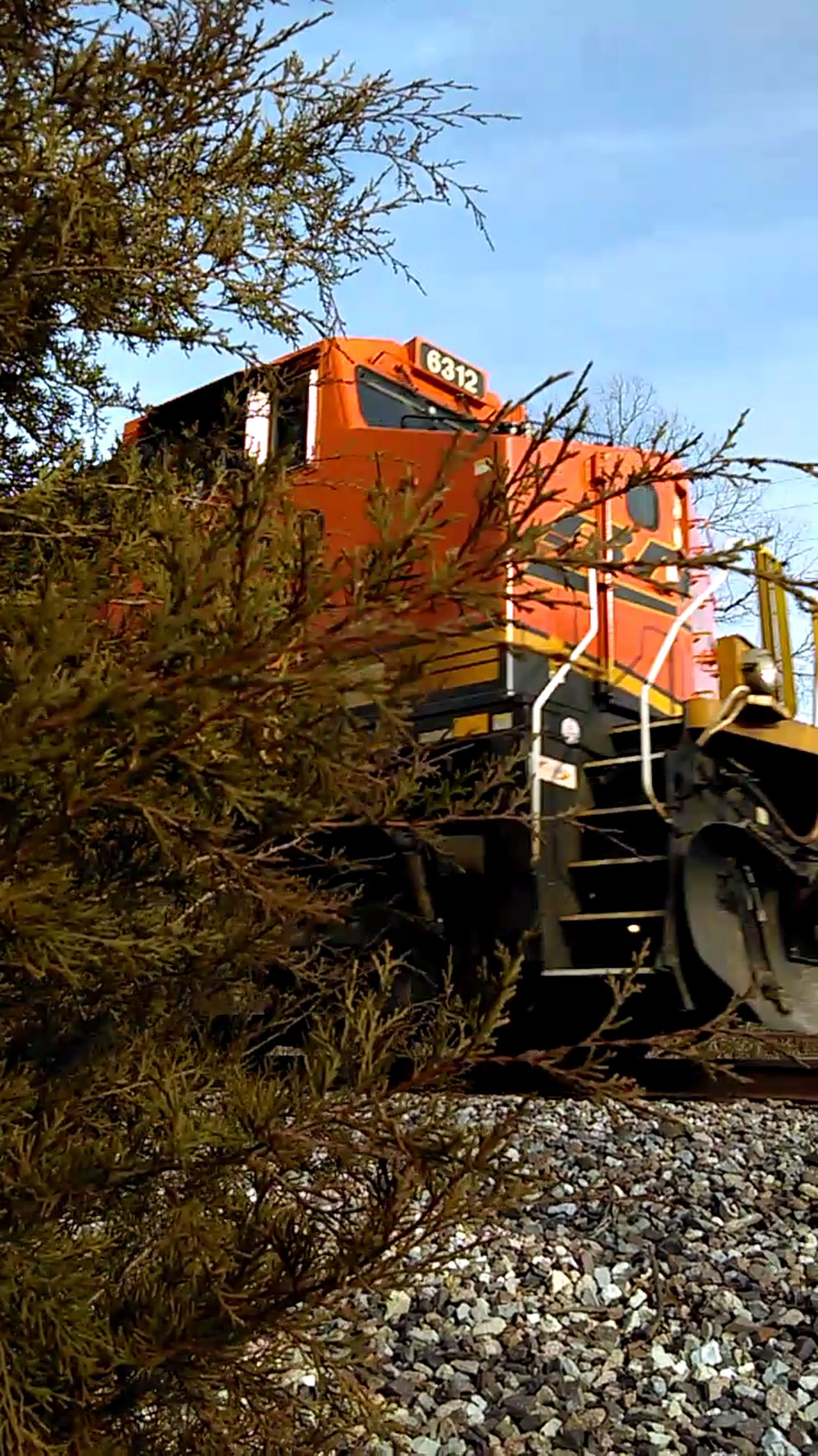 The Purist (no Edit, No Filter) Leavin' On A Southern Train Wrong Side Of The Tracks Mother Vs Nature TreePorn Monster Machine Daredevil Eyeem Dedicated Front View